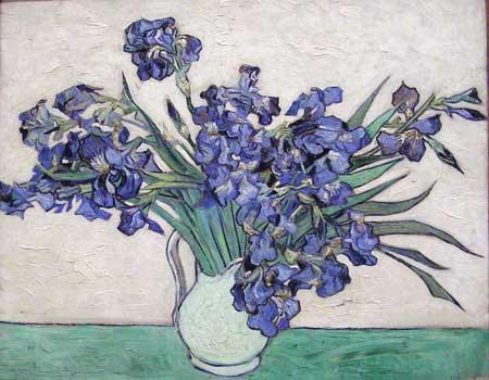 Van Gogh : Irises