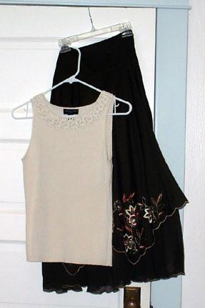 Skirt and shell