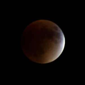 Read more about the article Super Blood Moon Eclipse